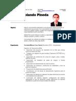 Cv Ruben Pineda