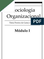 Sociologia Organizacional Mdl1.pdf