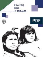 Politicas Pueblos Indigenas FAO