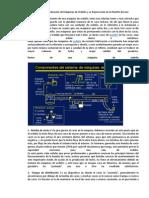 Funcionamiento y Evaluación de Máquinas de Ordeño y su Repercusión en la Mastitis Bovina