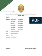 Informe Ambiental Contaminacion Del Suelo