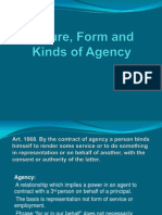 Nature, Form and Kinds of Agency