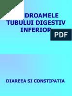 Sindroamele Tubului Digestiv Inferior