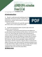 Plasmid DNA Extraction