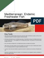 Mediterranean Endemic Freshwater Fish