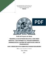 Nuevo Perfil Mejorado- Leonel Carlos Rivero Mamani