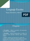 Lenguaje Escrito 2011