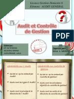 Audit Et Controle de Gestion