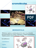 2 Biomoleculas Carbohidratos