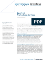 DS Professional Services