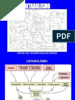 Generalidades Del Metabolismo