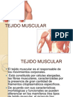 Tejido Muscular Expo