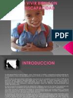 Avances Del Proyecto Discapacidad