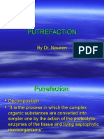 04 Putrefaction
