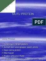 Mutu Protein - Copy