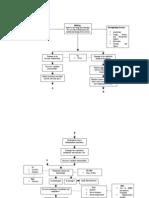 Acute Respiratory Distress Syndrome_pathophysiology