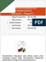 Kelompok 1 Reg 2 Fix (Kloramfenikol)