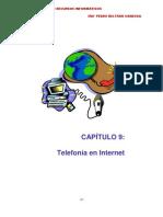 La Telefonia en Internet