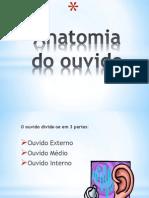 Power Point Ana Rolo