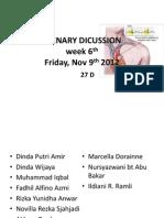 Plenary Dicussion