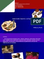 Diapositivas de Cultura