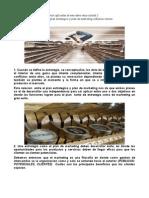 Opinion Personal Plan Estrategico Plan de Marketing Revista Para Enviar