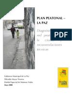 Plan Peatonal