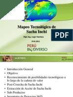 Mapeo-tecnológico-del-sacha-inchi