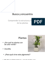 mitos y realidades de las plantas exámenes