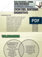 Valoracion Del Sistema Digestivo