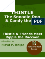 Thistle and Friends Meet Ripple the Raccoon
