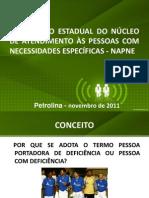 DIREITOS DA PESSOA COM DEFICIÊNCIA - CORONEL DANIEL