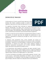 Depuracin de Primaveraformacin 2009-2010