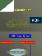 Fetal Circulation