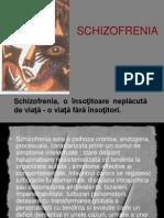43988490 Schizofrenia Rezumat