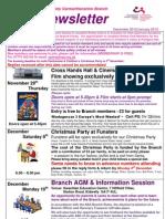 Carmarthenshire Newsletter Dec12