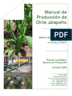 3-CDA_Fintrac_Manual_Produccion_Chile_Jalapeño _Revised_10_02