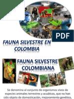 Fauna Silvestre de Colombia (2) (2)