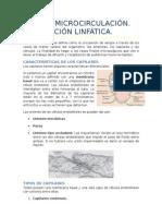 Tema 5. Microcirculación. Circulación linfática.