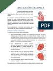 Tema 7. Circulación coronaria.