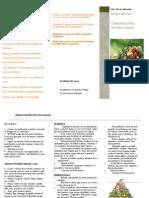 Folder diabetes, hipertensão