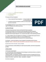 Droit Europeen Des Affaires