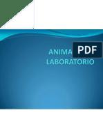 Animales de Laboratorio