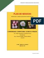 02 Correccion de Plan de Negocio Papa Nativa Agroideas 2012[2]