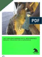 OCEANA Tortugas Marinas Mediterraneo