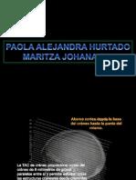 taccraneohallazgospatolgicos-101214222245-phpapp02