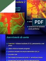 10.Patologie vasculara 2