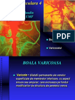 12.Patologie vasculara 4