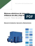WEG-motor