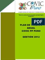 Plan de Trabajo COVIC 2012
